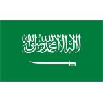Tendencias y pronostico de Arabia Saudita